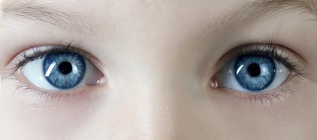 La importancia de los ojos